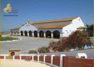 7 Schlafzimmer, Villa, zu verkaufen, 3 Badezimmer, Listing ID 1117, Chiclana de la Frontera, Andalusien, Spanien, 11130,