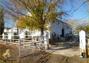 5 Schlafzimmer, Villa, zu verkaufen, 3 Badezimmer, Listing ID 1150, Arcos de la Frontera, Andalusien, Spanien, 11630,
