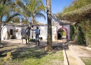 9 Schlafzimmer, Villa, zu verkaufen, 7 Badezimmer, Listing ID 1153, Spanien, 11470,