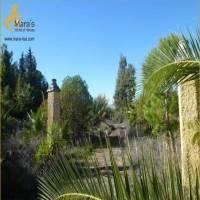 Villa, zu verkaufen, Listing ID 1180, Coto de Bornos, Andalusien, Spanien, 11649,