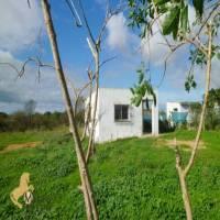 2 Schlafzimmer, Villa, zu verkaufen, 1 Badezimmer, Listing ID 1182, Chiclana de la Frontera, Andalusien, Spanien, 11130,
